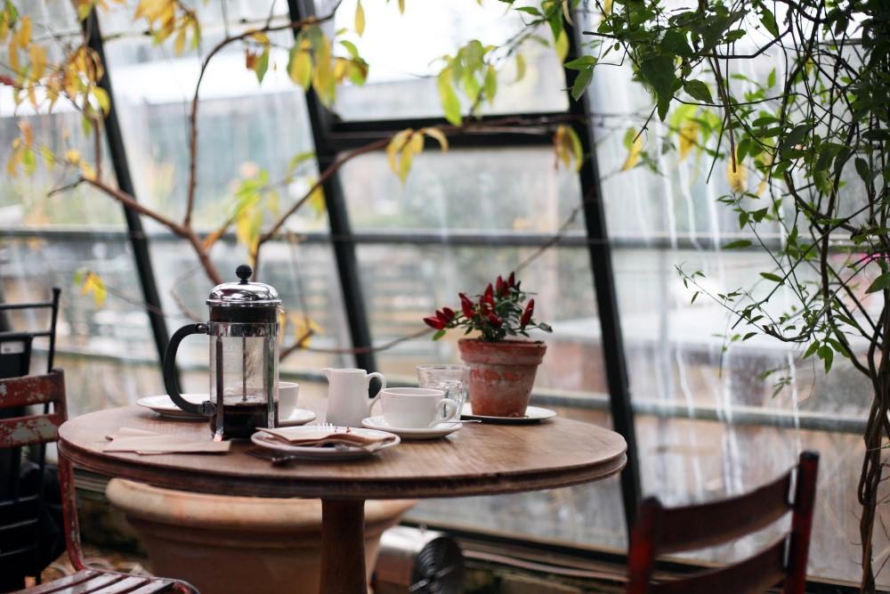 cafetera francesa de embolo