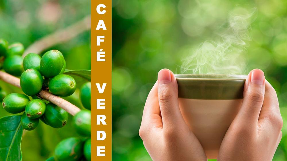 El café verde tiene muchos beneficios para la salud